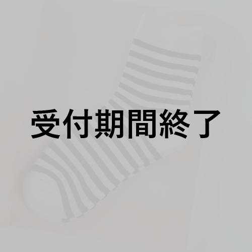 獅子神レオナさん用『靴下1ヵ月セット』 *金額は1口分