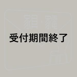 【射貫まとい】『8K対応 液晶 テレビ』